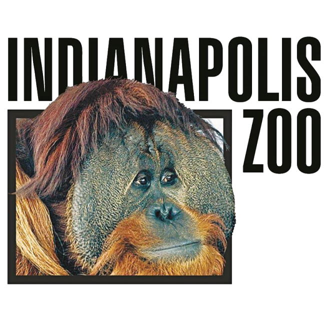 Top 20 Places To Take Kids In And Around Indianapolis Kids Out And About Indianapolis