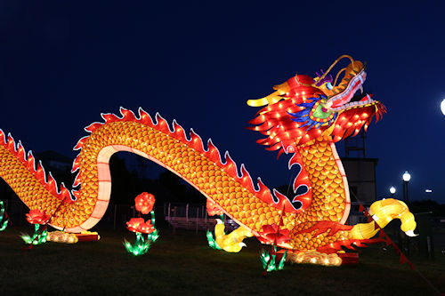 Dragon at NYS Chinese Lantern Festival